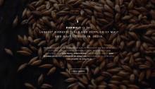 barmalt_1